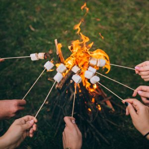 Bonfire Night Marshmallow